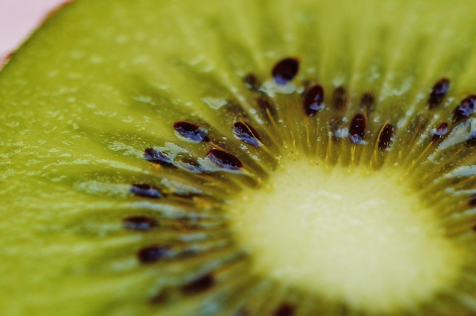 kiwi-1293489_960_720