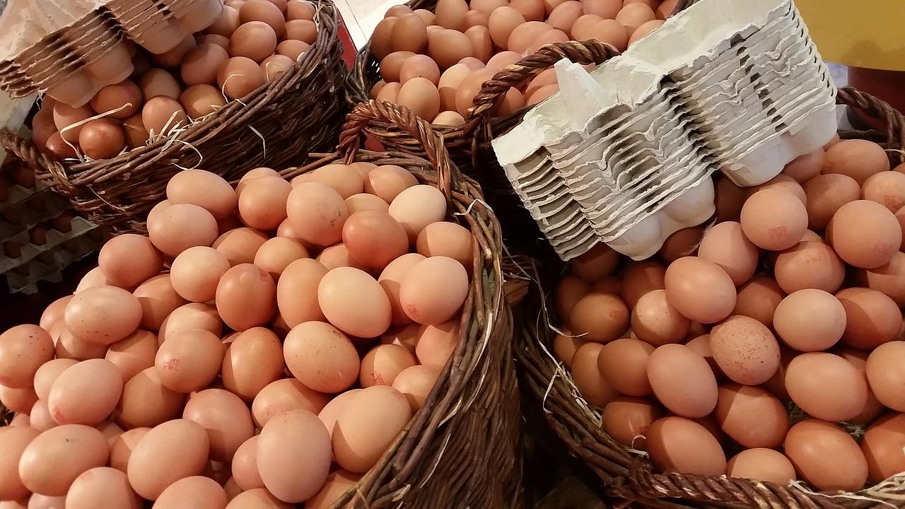 egg-1671574_1280