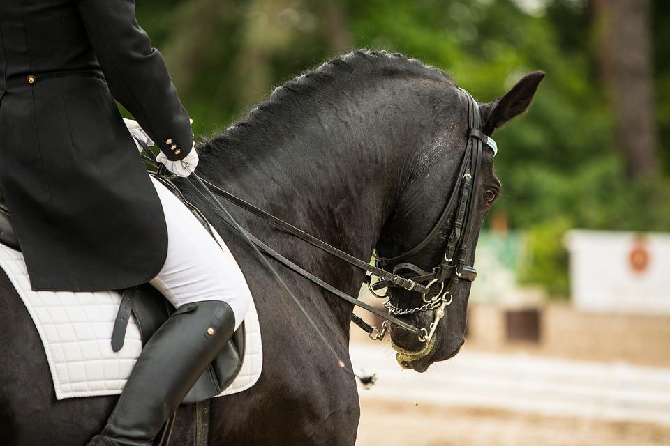 montar a caballo (1)