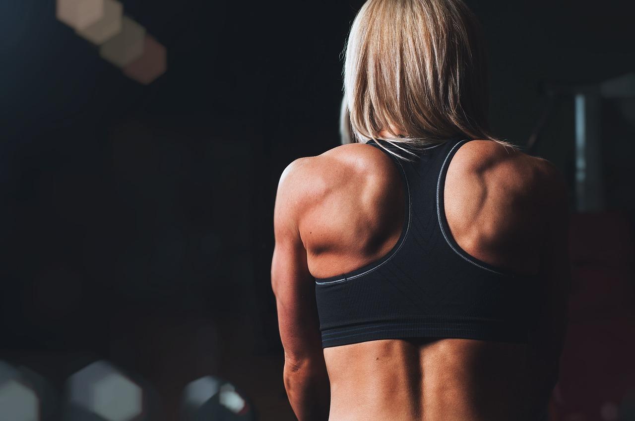 rendimiento musculos 1